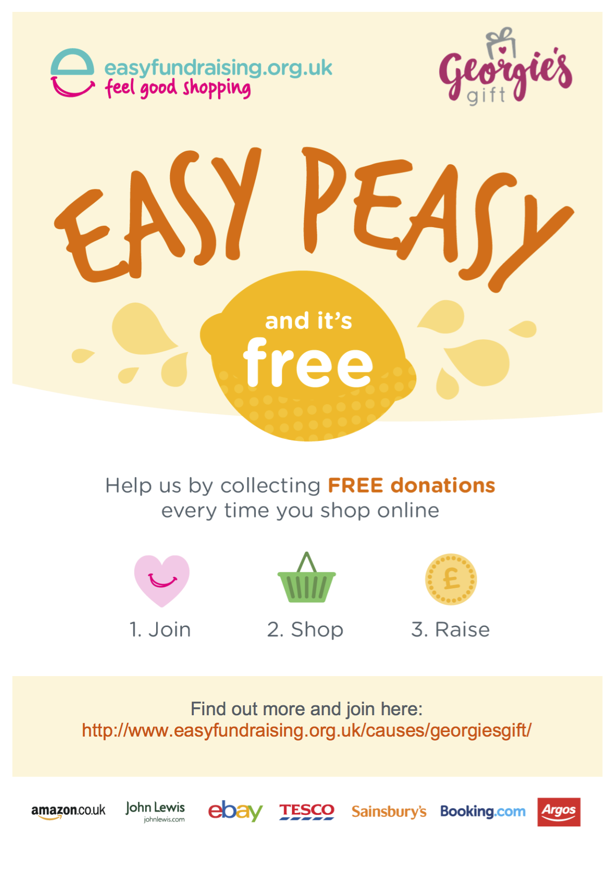 Easy Fundraising how it works